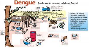 TeCuentoPeru_Dengue_2